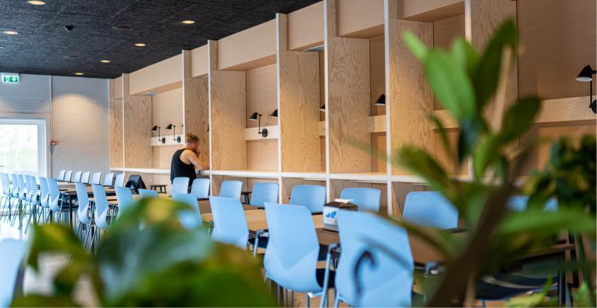 Femininpower event i Fredericia Idrætscenter. Dans og yoga.
